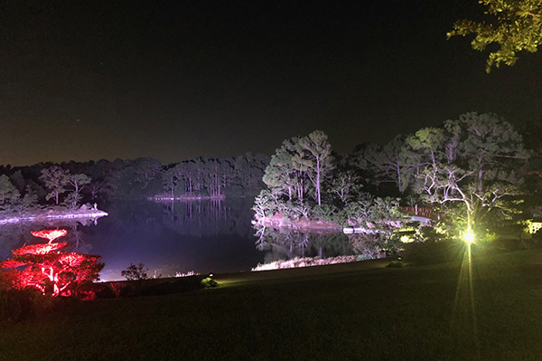 Night view of lake with colored lights